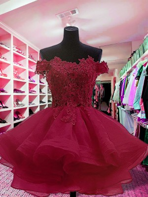 Ball Gown Off-the-Shoulder Short/Mini Applique Organza Dresses